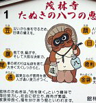 Tanuki's Eight Good Omens