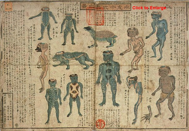 Kappa illustrations from the Suiko Junihin no zu, late Edo period.