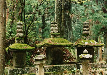 Moss-covered gravestones at Koyasan Monestary