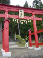 Gates of Shinto Shrines are often red colored